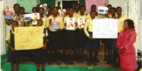 2013-nigeria-educational foundation for african womenefaw